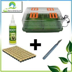 Kit bouturage Serre 12W chauffante laine de roche Gel Root It Scalpel