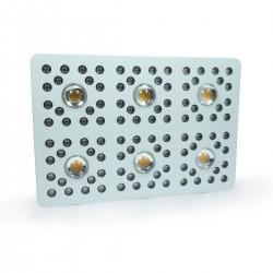 Florastar Panneau LED Xtrem 6
