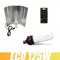 Kit CFL 125W Floraison