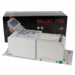 Ballast 250W FLORASTAR magnétique Class 1