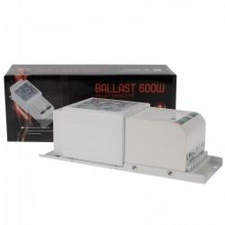 Ballast 600W FLORASTAR magnétique Class 1