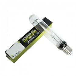 Ampoule HPS 250W Ortica