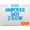 MH 250W