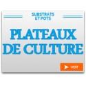 Plateaux de culture